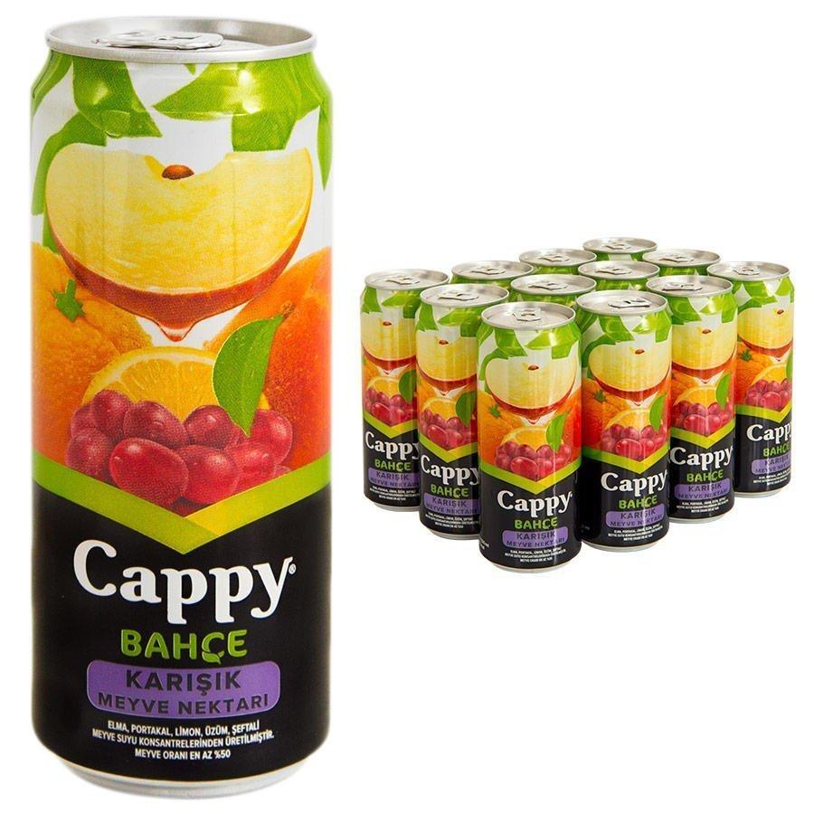 Cappy Karışık Kutu 330 ml